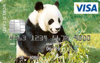 Visa Panda Card