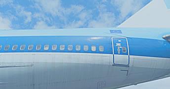 Vliegverzekering en fraude