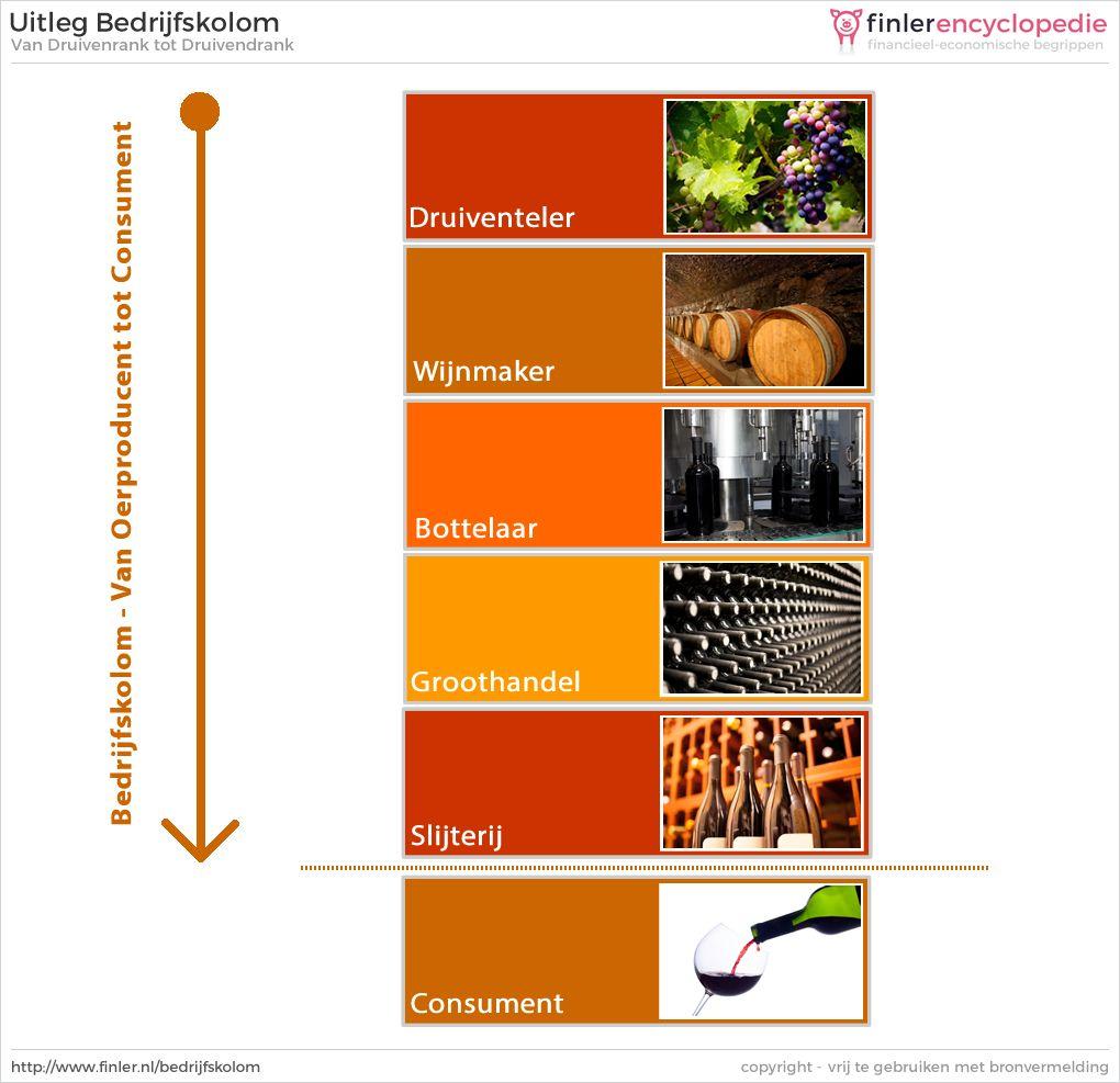 Bedrijfskolom van druif tot wijn